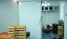 livrecold0004cAmara-de-frutas-e-legumes-220x130